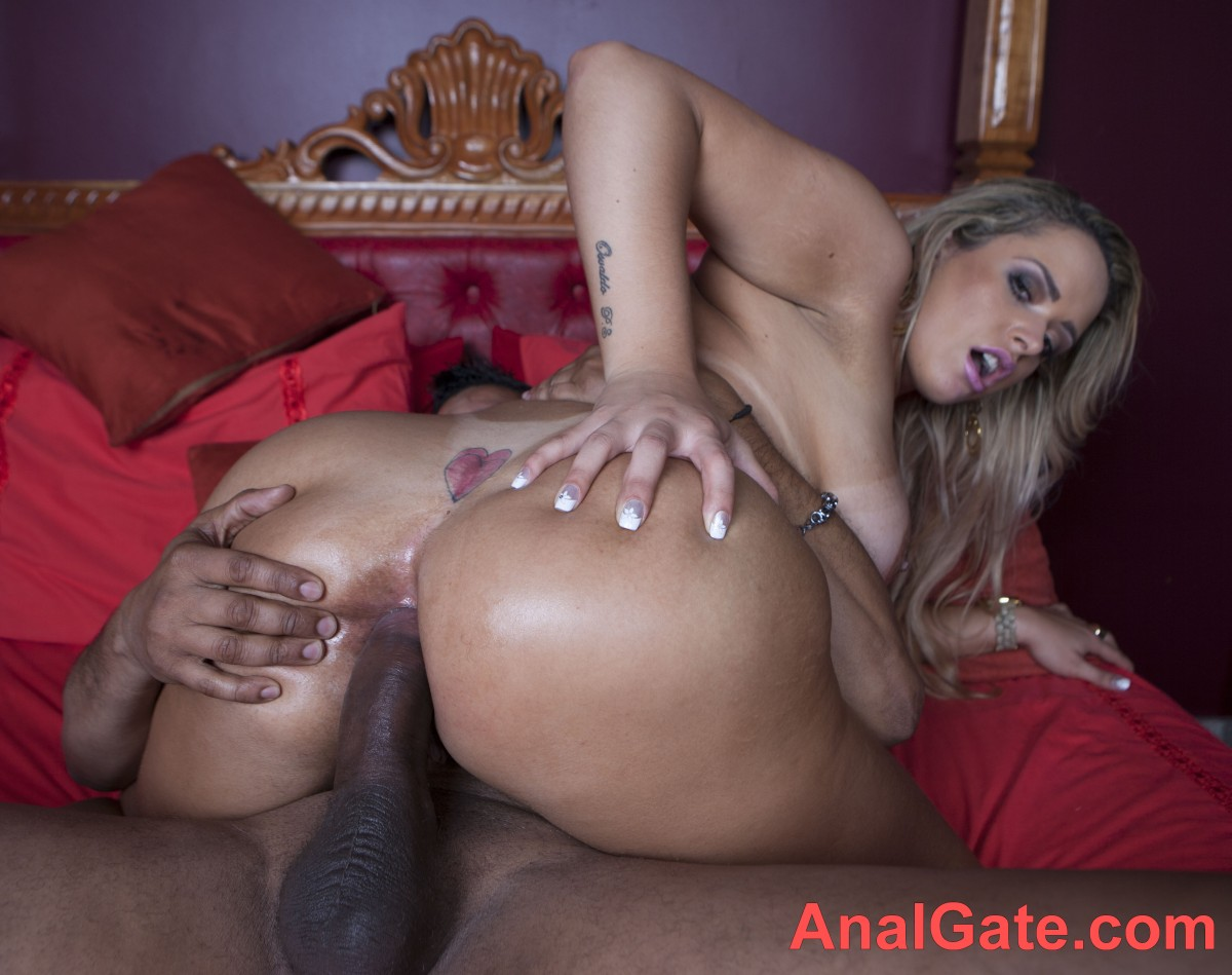 Big hot white ass anal sex