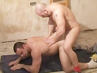 beffy tough construction workers kiss suck and fuck