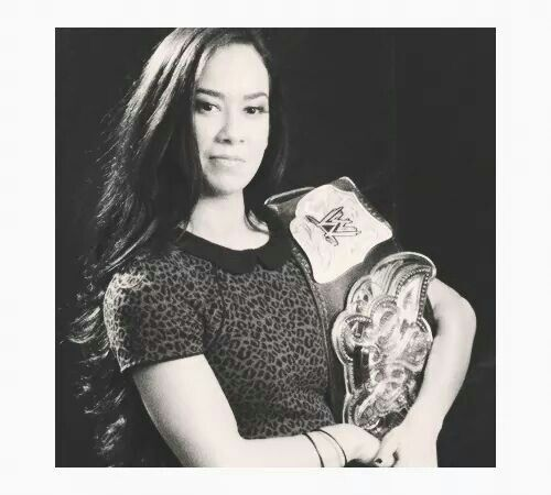 best aj lee images on pinterest aj lee champion and paige
