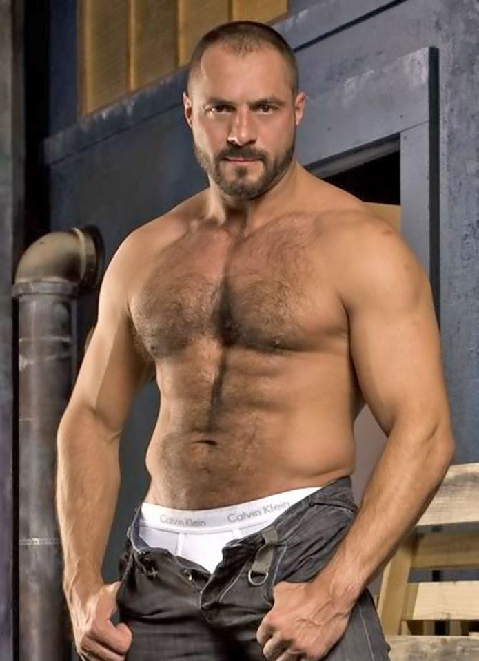 best arpad miklos images on pinterest hairy men bear and bears