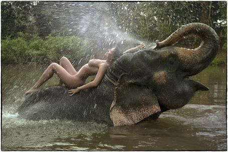 Are absolutely Elephant nude porn women agree