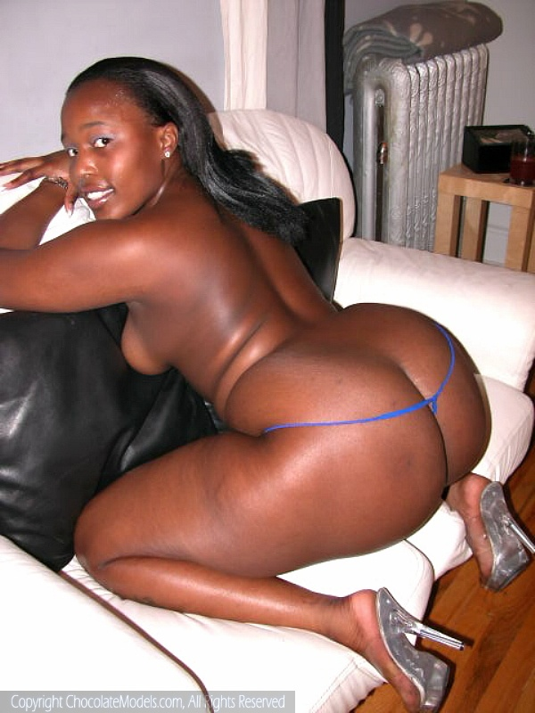 Black Girl Fat Ass Big Tits