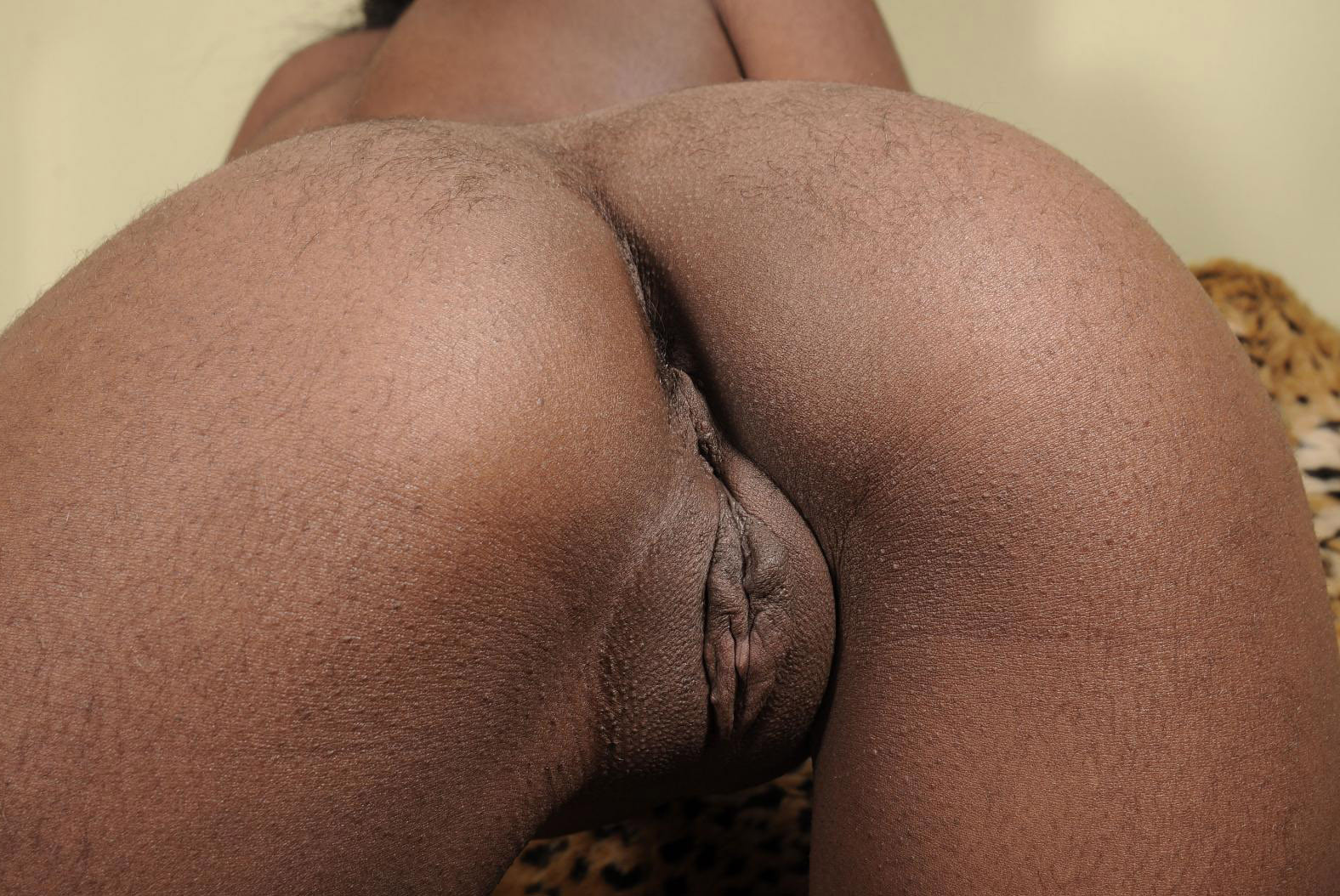Hairy Pussy Close Up Fuck