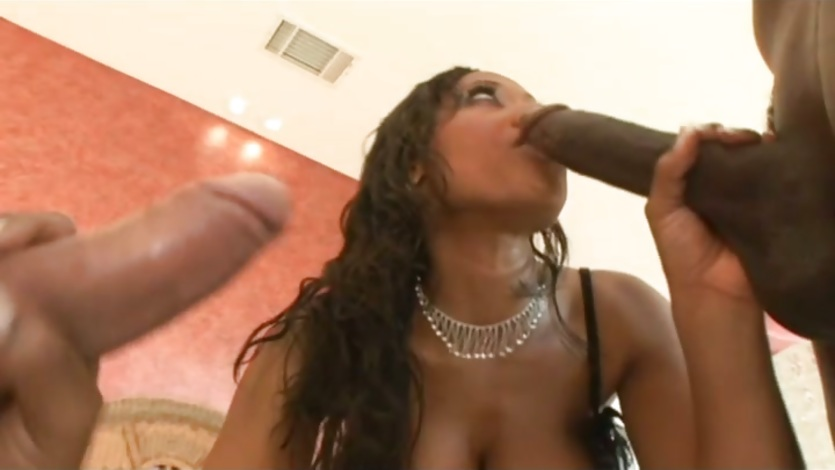 Big Ass Ebony Fucked Hard