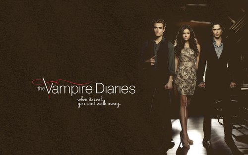 vampire diaries wallpaper the vampire diaries show wallpaper