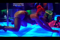 woodnites entertainment preview video