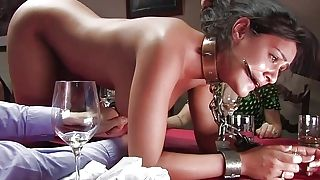 xxx the dinner party movies the dinner babe